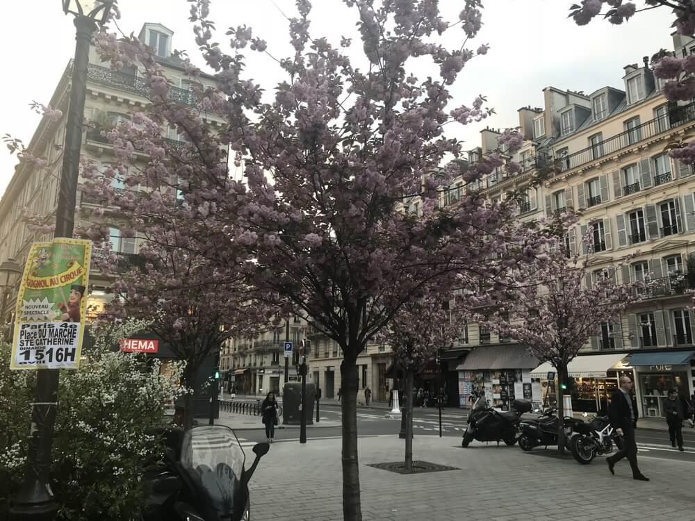 Natalia Paris Chartres Spring47
