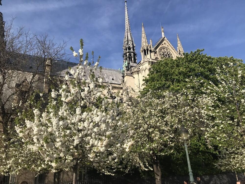 Natalia Paris Chartres Spring09