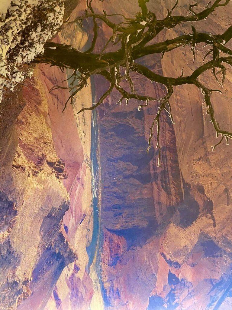 Natalia Planet Arizona29