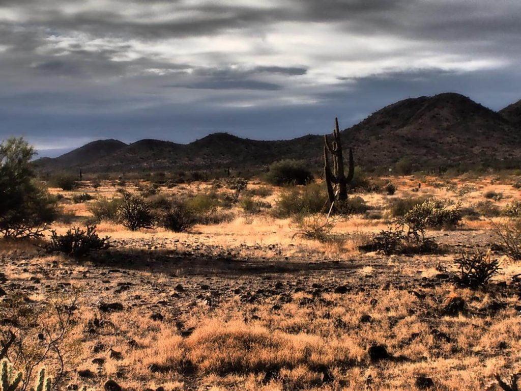 Natalia Planet Arizona31